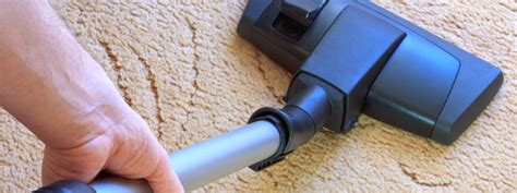 upholstery cleaning orlando carpet upholstery cleaning orlando fl proclean