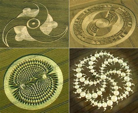 figuras geometricas hechas por extraterrestres testimony claims crop circles made by quot alien allies quot of