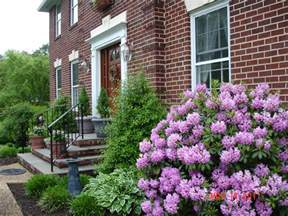 landscape surprising plants for front of house decor small shrubs for front of house best