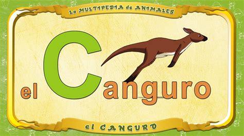 imagenes de animales que comiencen con la letra h la multipedia de animales letra c el canguro youtube