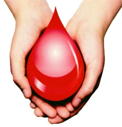 la sangue donazione di sangue dove rivolgersi ausl re it