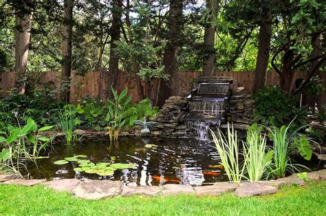 koi pond in backyard backyard koi pond with waterfall home design exles
