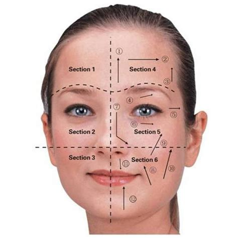 face mapping on pinterest estheticians facial massage 76 best images about microcurrent facials beauty on
