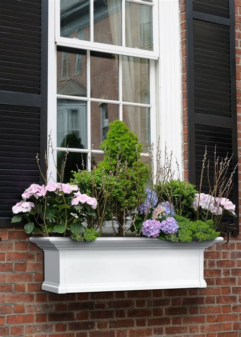house with window boxes 1000 ideas about house shutter colors on pinterest