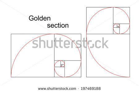 golden section spiral golden ratio stock photos images pictures shutterstock