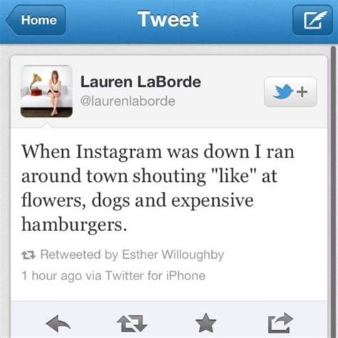 bio instagram posts funny quotes to put in your instagram bio google search