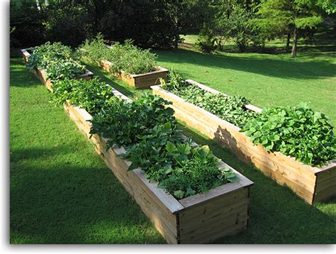 Diy 10 Raised Garden Beds Pinpoint Diy Raised Bed Vegetable Garden