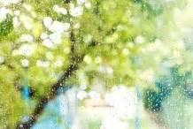 Fenster Flecken Eingebrannt by Fenster Glas Putzen Flecken Entfernen Mit Frag Mutti