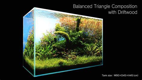 aquarium design group review aquarium 90cm aquarium design group custom aquarium