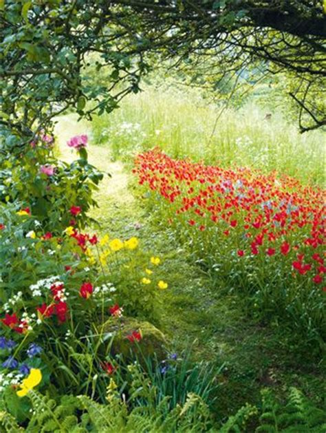 Summer Flowers Along Country Path Swede Cottage Farm Summer Flowers Garden