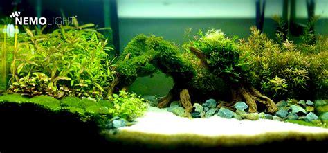 nemolight aqua fresh 45w freshwater led aquarium light