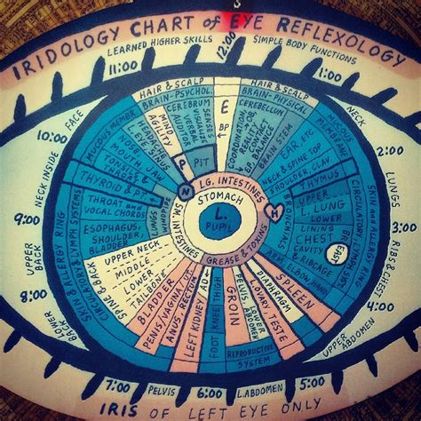 printable iridology eye chart 122 best images about iridology on pinterest heavy metal