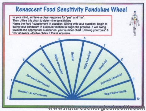 Food Sensitivity Pendulum Wheel