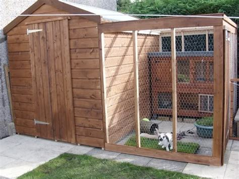 Rabbit Sheds by 25 Best Ideas About Rabbit Run On Outdoor