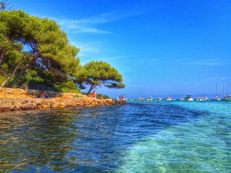 Ile Ste Marguerite, Cannes, France   Took this photo at the beach