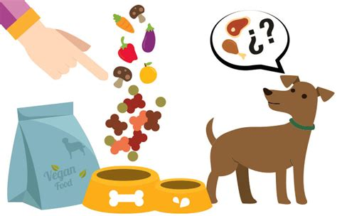 alimento vegano alimento vegano para perros