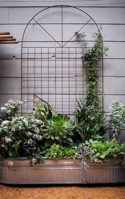 garden wall trellis metal best 25 metal trellis ideas only on wall trellis formal gardens and formal garden
