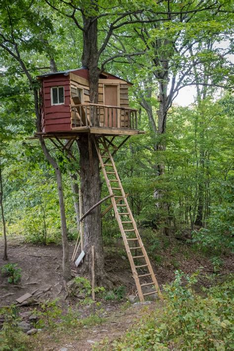 Treehouse For Backyard by 25 Awesome Tree Houses Activities