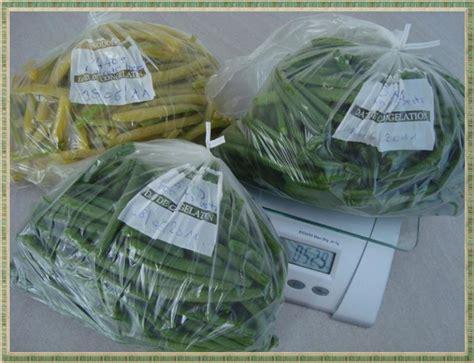 congeler les haricots verts frais la guillaumette