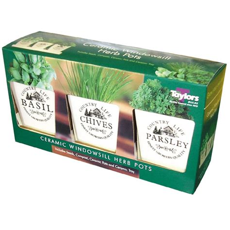 herb pots for windowsill windowsill herb pots on sale fast delivery
