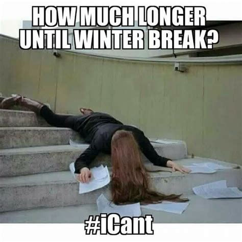 Winter Break Meme - 17 best images about teacher memes on pinterest parents