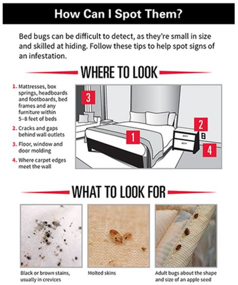Orkin Bed Bug Treatment Cost by Orkin Bed Bugs Awesome Orkin Bed Bug Feud Giveaway