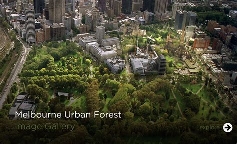 Balcony Melbourne by Melbourne Urban Forest Visual
