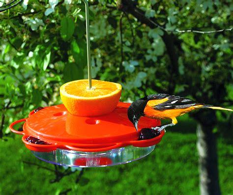 audubon classic oriole feeder 12 oz