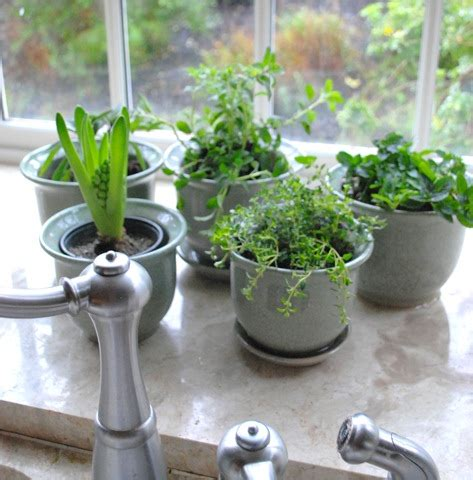 how to build an herb garden how to make an indoor herb garden indoor herb garden
