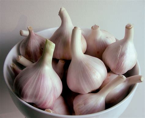 fresh garlic clove substitute