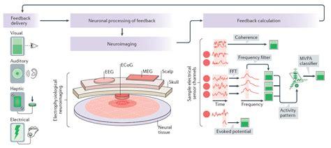 multivariate pattern analysis eeg the neurocritic neurofeedback training for insomnia no