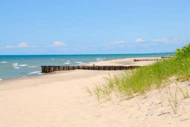 friendly beaches in michigan friendly beaches for you and your pooch reader s digest