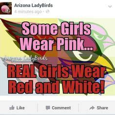Real Men Wear Pink Meme - arizona cardinals nfl football arizona ladybirds