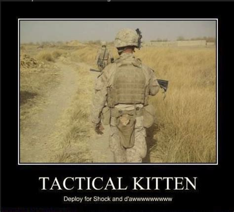 Military Memes - military meme roundup stripes central stripes