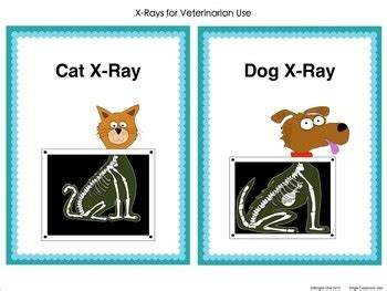 printable x ray signs pet vet dramatic play center clipart panda free