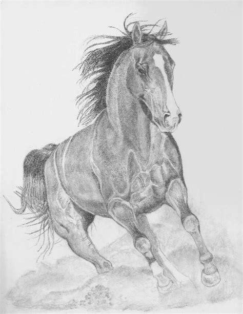 Imagenes Figurativas A Lapiz | m 225 s de 1000 ideas sobre como dibujar un caballo en