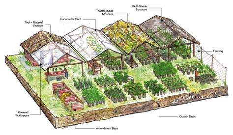 plant nursery layout design tropical nursery chaikuni institute