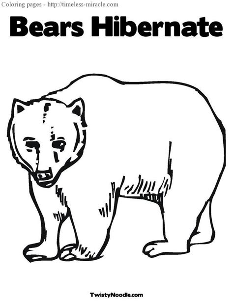 coloring pages animals hibernating hibernating animals coloring pages timeless miracle com