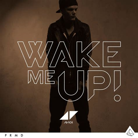 Single Cover Me Up Extended Mix Single Aloe Blacc Avicii