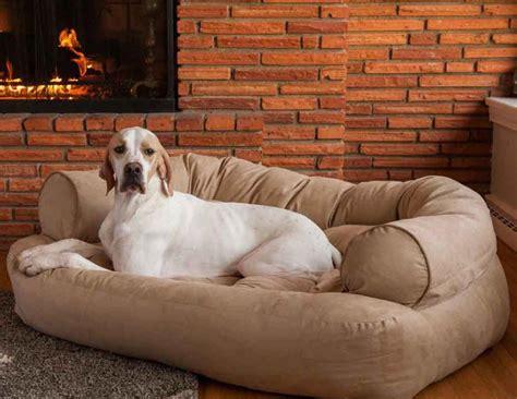 dog sofas for large dogs dog sofa beds for large dogs korrectkritterscom