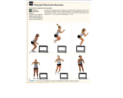 plyometric exercises nasm chapter 11 plyometric reactive training concepts