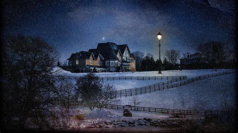 house lights nature trees forest night winter snow