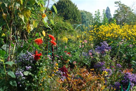 Images Flower Gardens Giverny Monet S Flower Garden