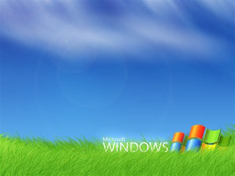 wallpaper for windows 7 1024x768 1024x768 windows 7 grass desktop pc and mac wallpaper