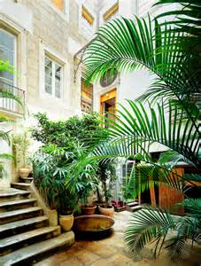 Beautiful Apartment Plants Houseplants And Decor Mangotangerine