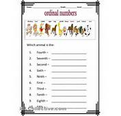 Cardinal And Ordinal Numbers Worksheets Printable