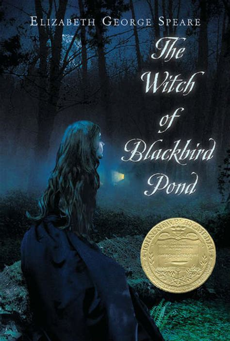 blackbird a novel books vintage ya review the witch of blackbird pond a