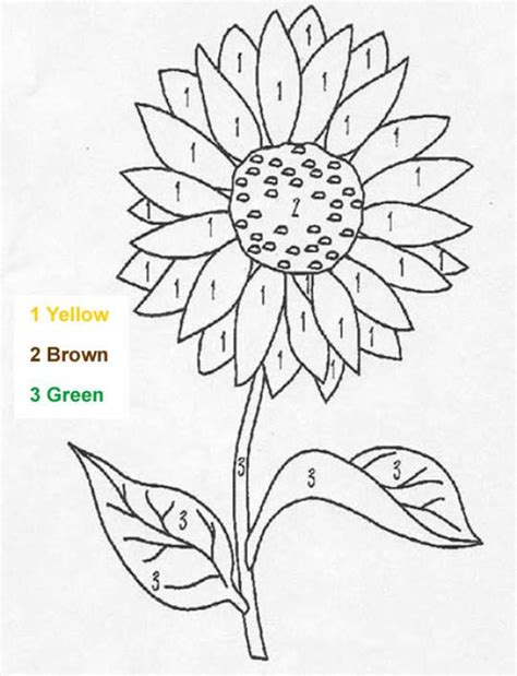 color by number flower coloring pages flower coloring pages hellokids com