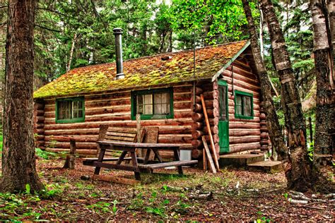 Buy A Log Cabin To Live In by Log Home Restoration Process Give Your Log Home A Make