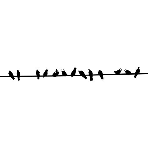 o the wire birds on a wire silhouette www pixshark images galleries with a bite